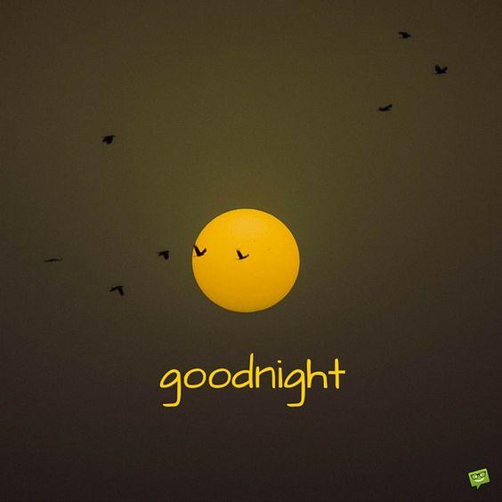 goodnight.jpg15