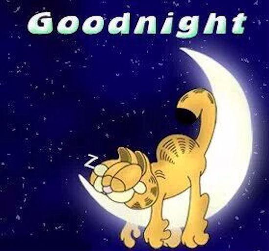 145329-Goodnight