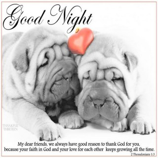 small_good-night-quote-with-cute-puppies-pictures-photos-and-images-for