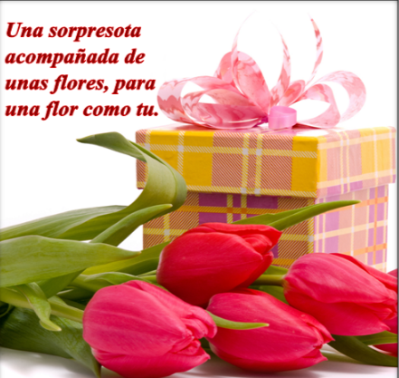 flores-hermosas-con-frases-de-amor-y-tulipanes