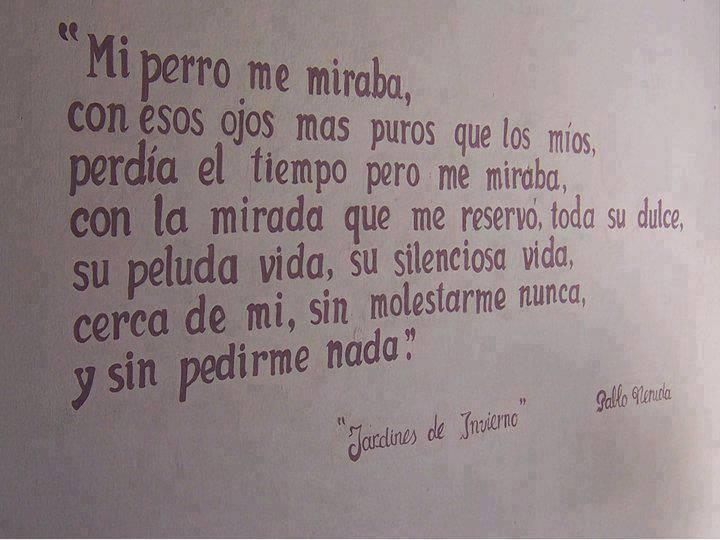 Pablo Neruda Frases Y Poemas T