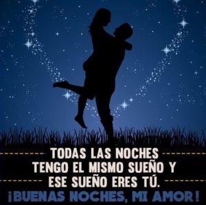 Que tengas una linda noche deseo